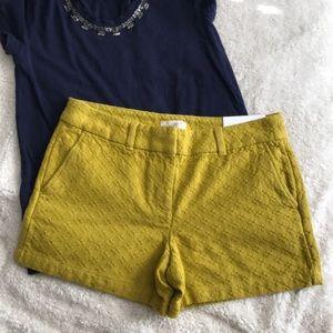 NWT🎊Ann Taylor Loft Women's Sz 2 shorts